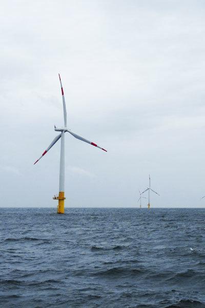 Bootsausflug mit der MS Alexander vor der Kreideküste auf der Insel Rügen und über die Ostsee buchen